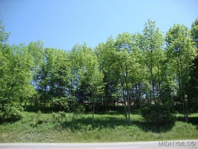 Bridgewater NY Residential Lots & Land For Sale: $45,000