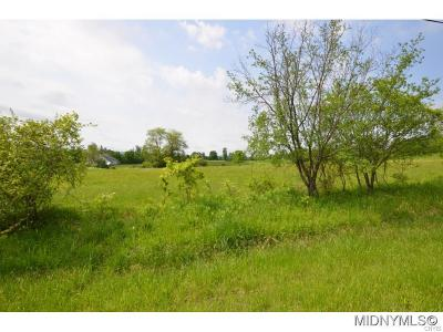 Clinton NY Residential Lots & Land For Sale: $37,500