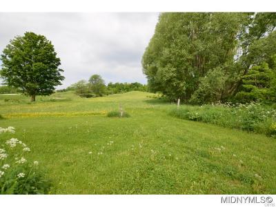 Clinton NY Residential Lots & Land For Sale: $25,000