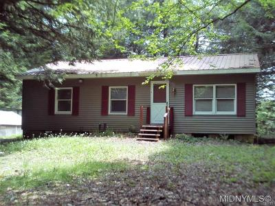 Remsen Single Family Home For Sale: 9036 Woods Road