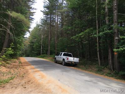 Forestport Residential Lots & Land A-Active: 993 Lone Pine Drive