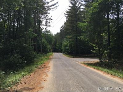 Forestport Residential Lots & Land A-Active: 995 Lone Pine Drive