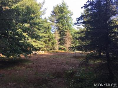 Forestport Residential Lots & Land A-Active: 3040 Bower Road