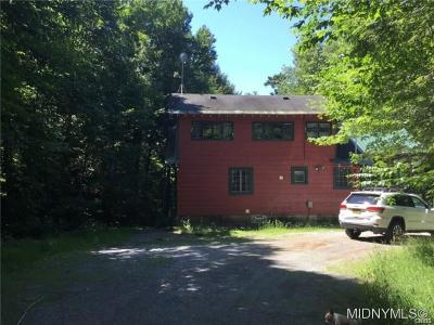 Herkimer County Single Family Home A-Active: 552 Okara East Road E