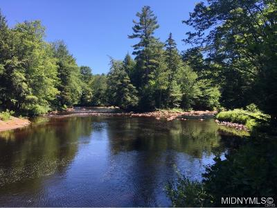 Forestport Residential Lots & Land A-Active: 11920 Black River Forest Road