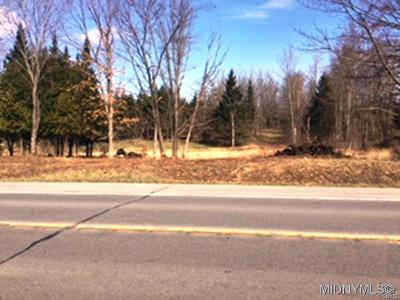 Holland Patent Residential Lots & Land A-Active: Route 365