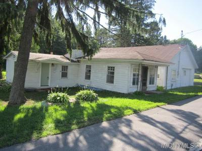 Single Family Home For Sale: 4820 Nys Route 69