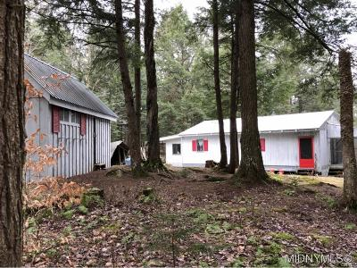 Forestport NY Single Family Home A-Active: $59,000