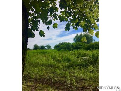 Holland Patent Residential Lots & Land A-Active: 8031 Benson Road