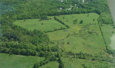 New Hartford Residential Lots & Land A-Active: Seneca Woods