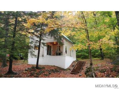 Old Forge Single Family Home A-Active: 179 Cliff Road
