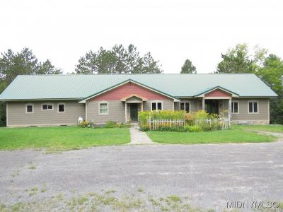 Herkimer County Single Family Home A-Active: 830 Millers Mills Road