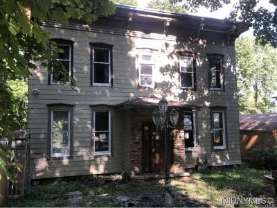 Herkimer County Single Family Home A-Active: 10 Maple Place
