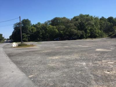 Residential Lots & Land For Sale: 41 Clinton Road