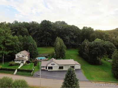 Herkimer County Single Family Home A-Active: 179 Finks Basin Road
