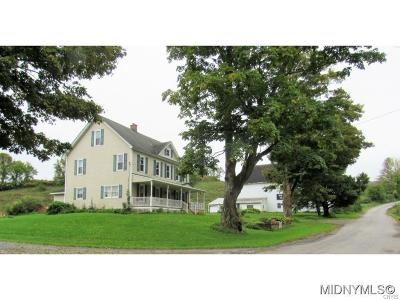 Herkimer County Single Family Home A-Active: 199 North N. Garndinier Road