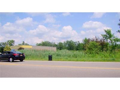 Residential Lots & Land A-Active: 2107 Grand Island Boulevard
