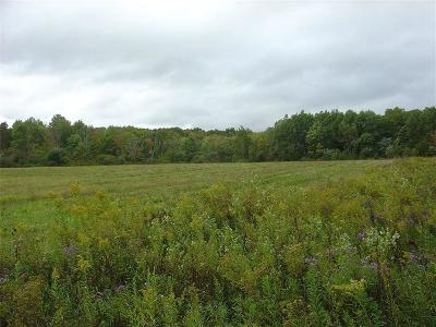 Busti Residential Lots & Land A-Active: South Main Street Ext.