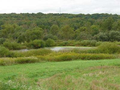 Busti Residential Lots & Land A-Active: Garfield Road