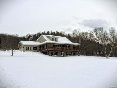 Ellicottville Single Family Home A-Active: 6600 Maples Road