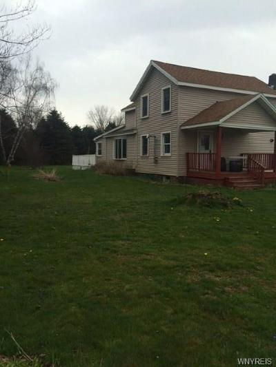 Allegany Single Family Home A-Active: 4637 South Nine Mile Road