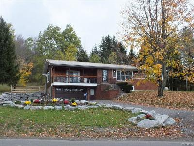Ellicottville Single Family Home A-Active: 6000 Sugartown Road