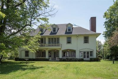 Hamburg NY Single Family Home A-Active: $850,000