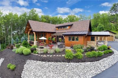 Ellicottville Single Family Home A-Active: 6830 Niles Road