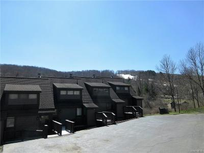 Ellicottville Condo/Townhouse A-Active: 103 Brookline Rd-The Woods