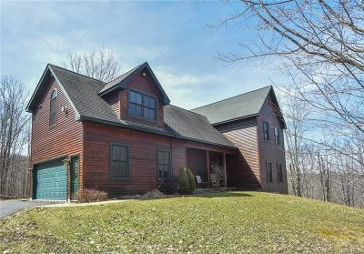 Ellicottville Single Family Home A-Active: 7447 Dublin Road