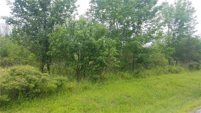 Lewiston Residential Lots & Land For Sale: V/L Upper Mountain Road