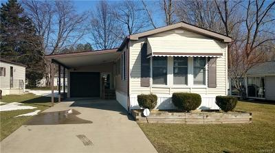 Single Family Home Sold: 3926 Lockport Olcott #111