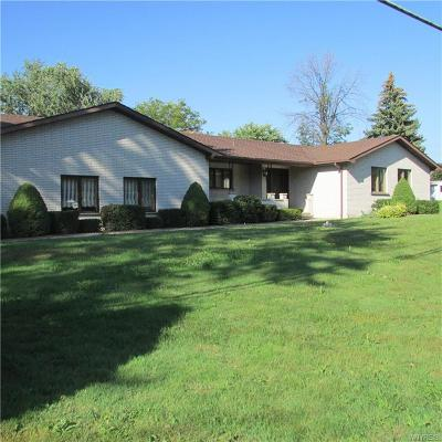 Lewiston Single Family Home A-Active: 515 Irving Drive