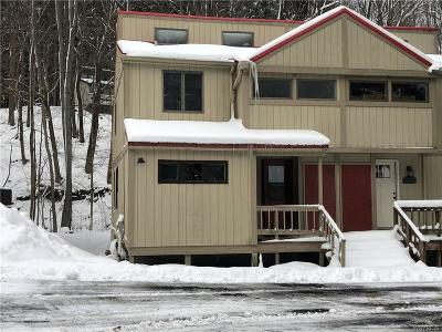 Ellicottville Condo/Townhouse A-Active: 3 Holimont Avenue