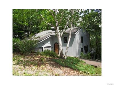 Ellicottville Single Family Home A-Active: 6806 Buchan Ridge Road