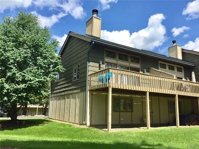 Ellicottville Condo/Townhouse A-Active: 27 Alpine