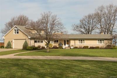 Buffalo, Evans, Hamburg Single Family Home A-Active: 5928 Old Lake Shore Road