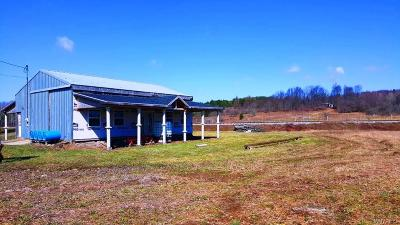 Arcade Residential Lots & Land A-Active: Genesee Road