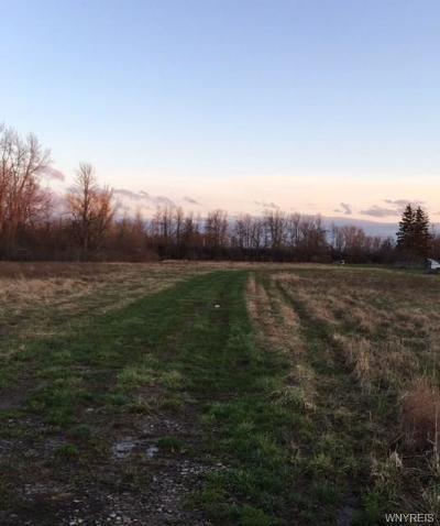 Niagara County Residential Lots & Land P-Pending Sale: 3312 Saunders Settlement Road
