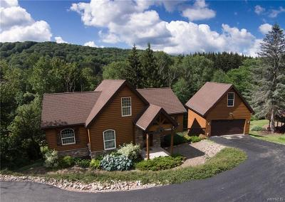 Ellicottville Single Family Home A-Active: 6835 Springs Road