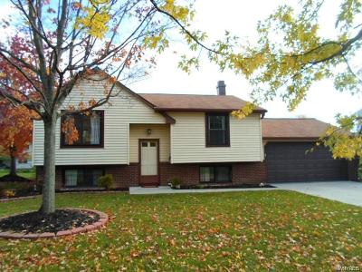 Grand Island Single Family Home A-Active: 31 Beaver Lane