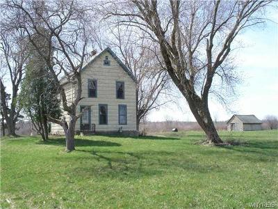 Grand Island Single Family Home C-Continue Show: 2356 Whitehaven Road