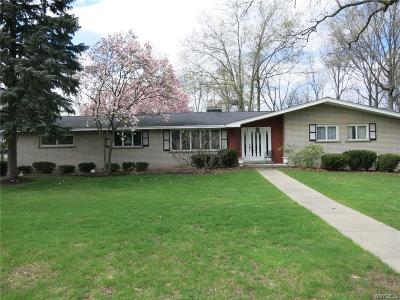 Lewiston Single Family Home A-Active: 5400 Annover Drive