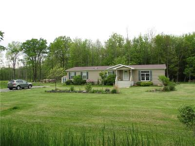 Brant Single Family Home A-Active: 242 Lotus Point Road