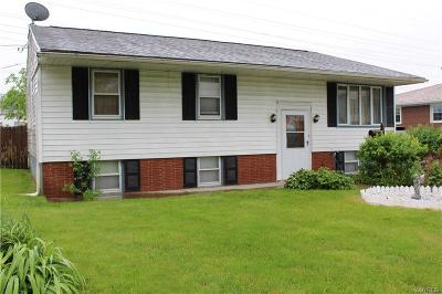 Lackawanna Single Family Home A-Active: 157 Smith Drive