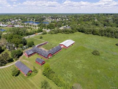 Orchard Park Residential Lots & Land A-Active: Vl Jewett Holmwood Road
