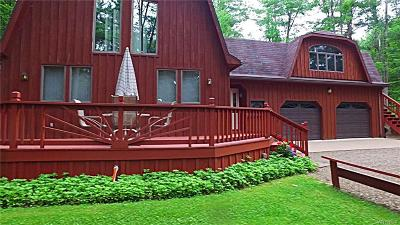 Allegany County, Cattaraugus County Single Family Home A-Active: 8083 Lakeshore Drive #B