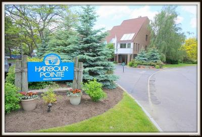 Buffalo Condo/Townhouse A-Active: 7 Harbour Pointe Common