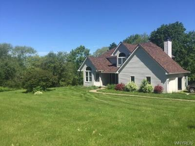 Attica Single Family Home A-Active: 3793 Fullington Road