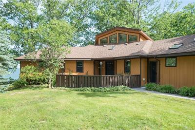 Buffalo, Evans, Hamburg Single Family Home A-Active: 9696 Oak Grove Drive